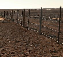 Dingo Fence, South Australia by mapartstudio