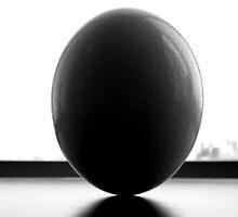 ostrich egg by JUZ3R