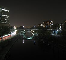 rideau canal at night by JUZ3R