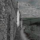 lane by paula cattermole artinapuddle