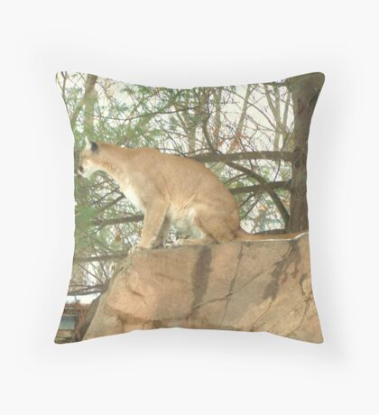 Large Cat 002 Throw Pillow