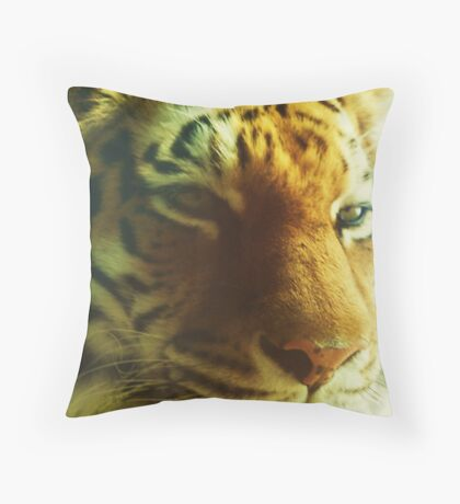 Large Cat 003 Throw Pillow