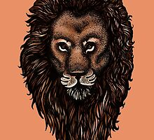 Lion. by Claire Hawken