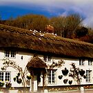 Cottage in Branscombe by Charmiene Maxwell-Batten