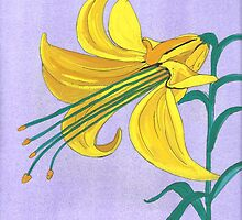 lilium by paula cattermole artinapuddle