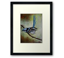 """Blue Wren  """"Perfect View""""  SOLD Framed Print"""