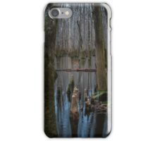 A Touch of Color – Congaree National Park, South Carolina iPhone Case/Skin