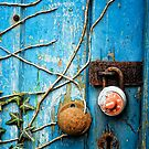 Blue door by Simon Duckworth