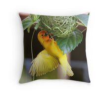 Golden Palm Weaver 5 Throw Pillow
