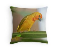 Golden Palm Weaver 6 Throw Pillow