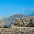 Dufton Pike - Cumbria by Andy Grant