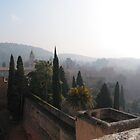 Mist over Granada by pictureit