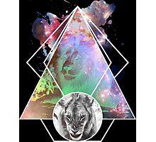 King Lion Photographic Print