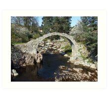 Packhorse Bridge, Carrbridge Art Print