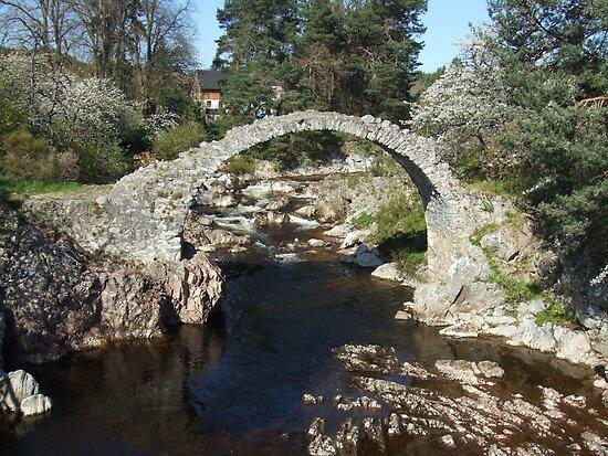 Packhorse Bridge, Carrbridge by Debz Kirk
