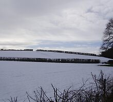 wintry somerset 1 by brucemlong
