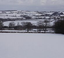 wintry dorset 1 by brucemlong