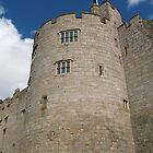 Chirk Castle by baldy