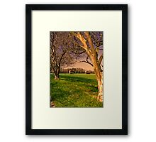 Sunsets on Crepe Myrtle Farm II Framed Print