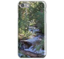 calvin and hobbes forest iPhone Case/Skin