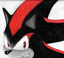 Shadow the Hedgehog by Aiea