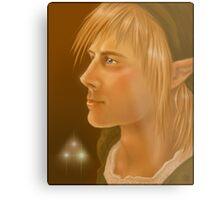 Link Legend of Zelda Metal Print