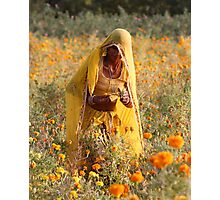 Flower Amongst Flowers Photographic Print