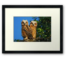 Creatures of the Wood Framed Print