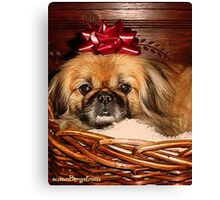 Decorate Your Dog Day! Canvas Print
