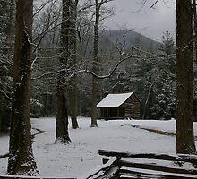 Carter Shields Cabin by Adrena87