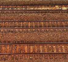Tracks by Modified