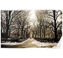 WInter Landscape in Central Park Poster