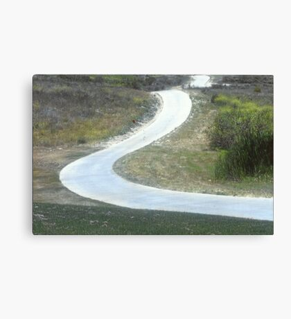 Every Day Is A Winding Road.. Canvas Print