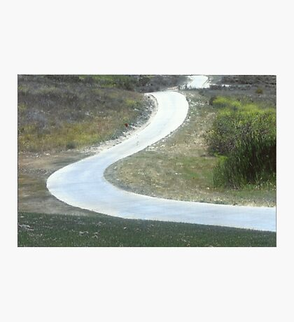 Every Day Is A Winding Road.. Photographic Print