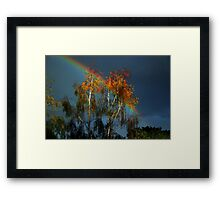 Golden tree at the end of the rainbow Framed Print