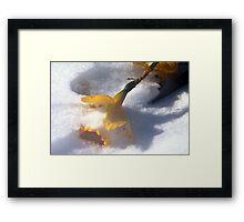 Promise of Spring Framed Print