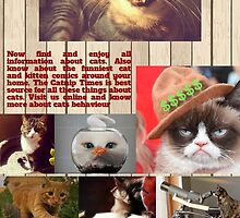 Know About Scientific Discoveries About Cats by vihyzoho