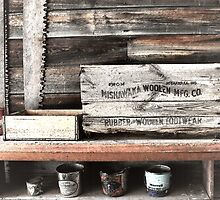 MISHAWAKA STILL LIFE by dgcheney