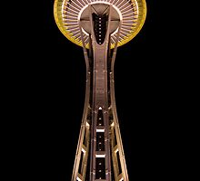 Seattle Space Needle at night 2 by pmacimagery