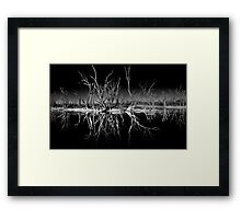 Nighttime Reflections Framed Print