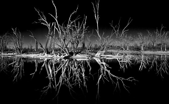 Nighttime Reflections by Steve Chapple