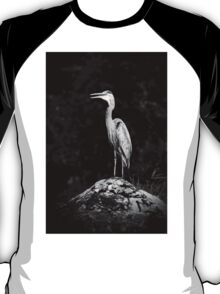 Resting on a Rock T-Shirt