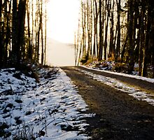 snowy road to the sun by pmacimagery