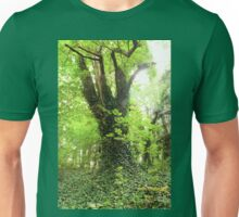 An Old Forest Bathed in Bright Light Unisex T-Shirt