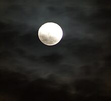 The moon was a ghostly galleon by Shubhrajit Chatterjee