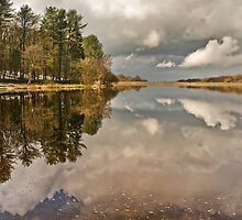 Roddlesworth Reflections by Steve  Liptrot