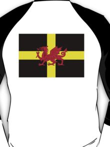 St Davids Cross And Welsh Dragon  T-Shirt