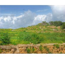 Typical maltese field walls Photographic Print