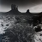 The Mittens, Monument Valley by Gordon Lukesh