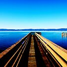 Clear Lake by Hollie Nass